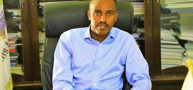 Ethiopia's challenge in Somali region: overcoming 'mafia